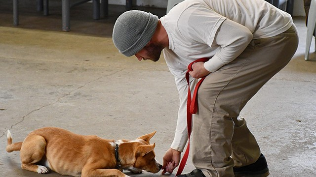Jonathan Lacy, Second Chance Pups participant, works on training a dog. (Courtesy NDCS)